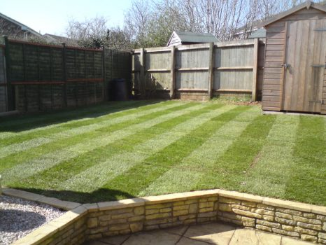 garden full landscaped and freshly laid turf