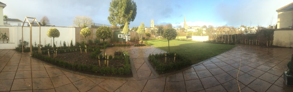 100's of plants planted in garden in torquay