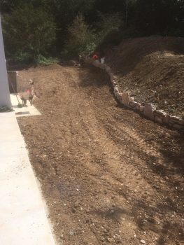 grading 10 tonne of top soil ready for turfing