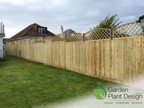 feather edge fencing topped with convex trellis